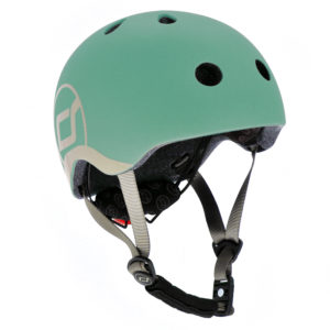 HELM_XS_forest
